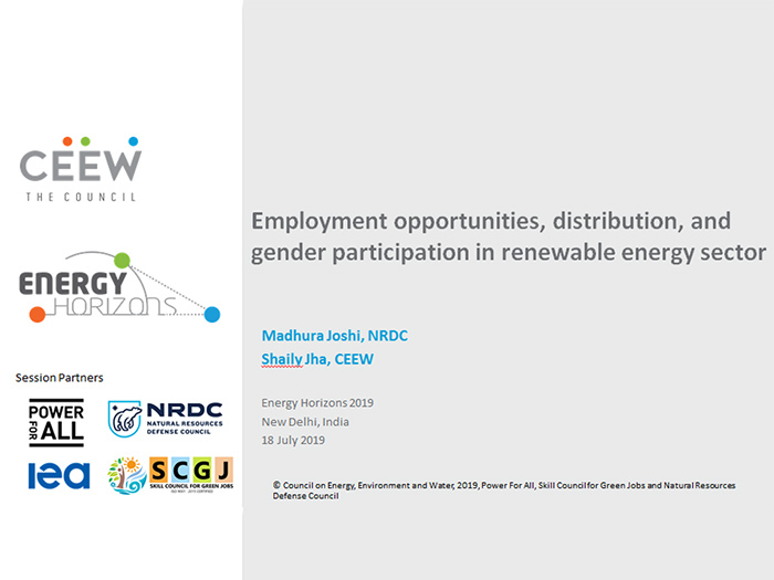 Employment opportunities, distribution, and gender participation in renewable energy sector