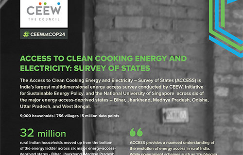 Access to Clean Cooking Energy and Electricity – Survey of States