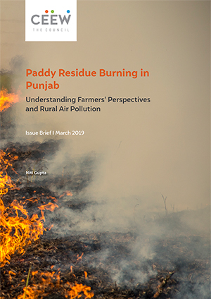Paddy Residue Burning in Punjab