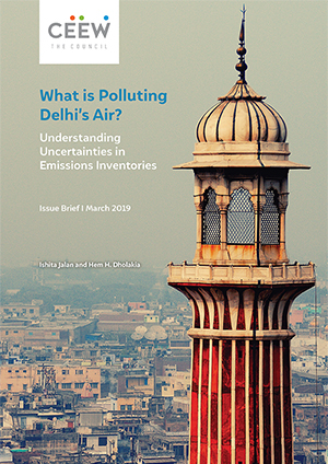 What is Polluting Delhi's Air?