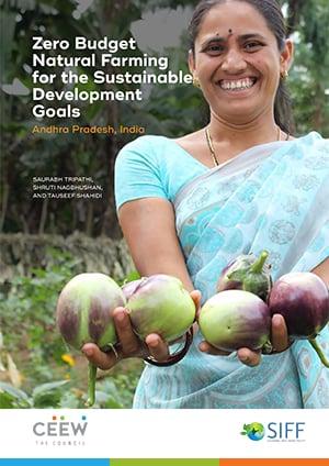 Zero Budget Natural Farming for